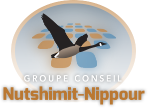 Groupe Conseil Nutshimit Nippour